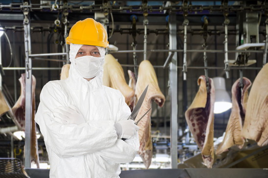 Photo of a butcher assuring food safety on butchery