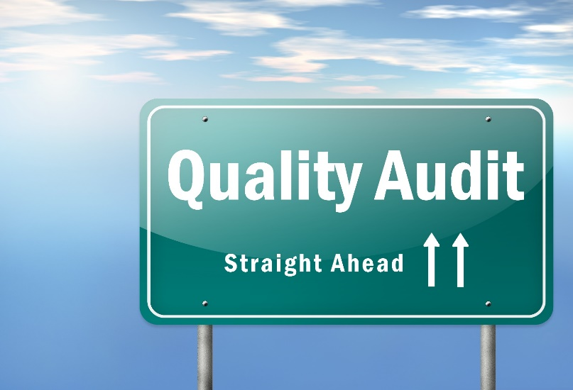 QSE Difference in Training, Auditing, Consulting Services